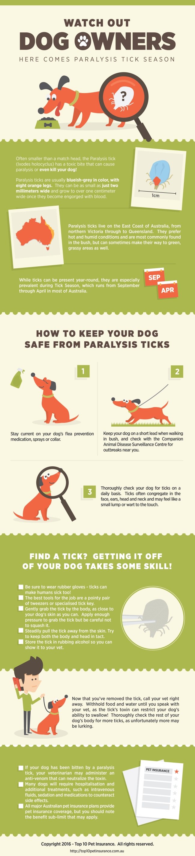 Paralysis Tick Infographic