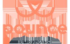 Pounce pet insurance logo